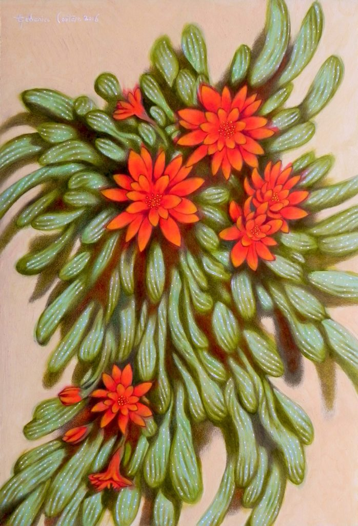 Red flowers I
